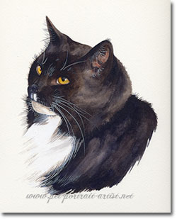 Cat Pet Portrait in Watercolour