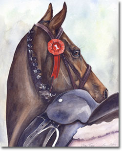 Watercolour portrait of a horse - Showtime