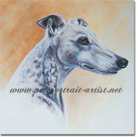 Oliver the greyhound