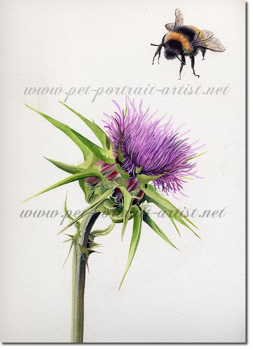 Some Bee Time - A Watercolour Painting, by Joanna Culley Acclaimed Animal Artist