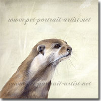 Watercolour painting of an otter