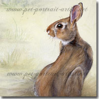 Watercolour painting of a rabbit