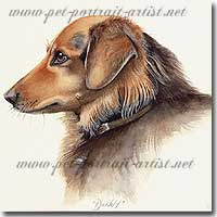 Dog Portrait of a Danny, by Joanna Culley, Pet Portrait Artist