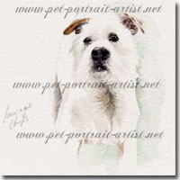 Portrait of a pet Jack Russell by Joanna Culley